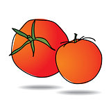 Freehand drawing tomato icon