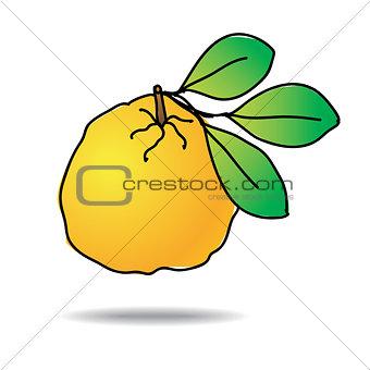 Freehand drawing ugli fruit icon