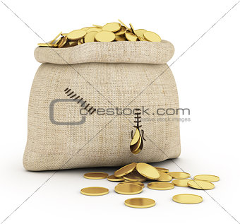 Money coins in open bag isolated on white