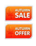 autumn sale and offer labels with fall leaf