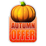 autumn offer label with fall pumpkin