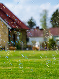 Suburban soap bubbles