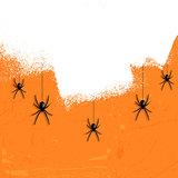 Grunge halloween spiders