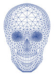 skull with geometric pattern, vector