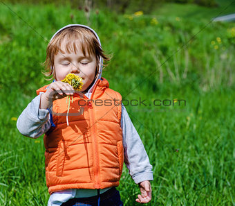 Adorable baby girl with dandelions outdoors