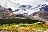 Landscape view of Columbia glacier in Jasper NP, Canada