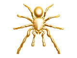 golden spider