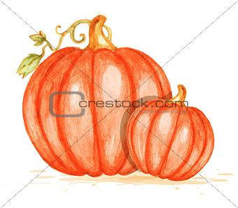 Watercolor orange pumpkins