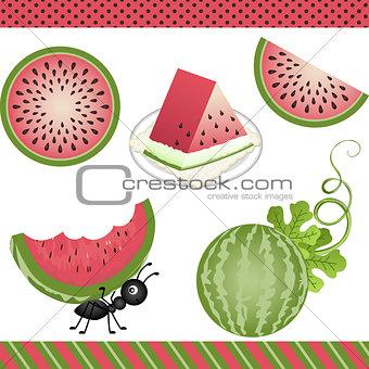 Watermelon Digital Clipart