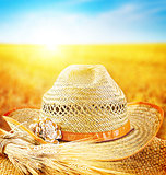 Wheat field and the hat of a farmer