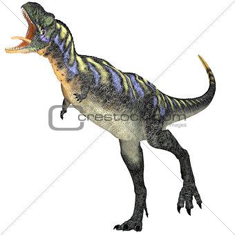 Aggressive Aucasaurus Dinosaur