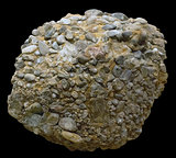 Upper Jurassic siliceous conglomerate