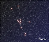 constellation taurus