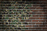 Dark brick wall - Army camouflage