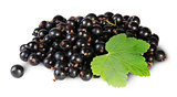 Bunch Of Black Currant With Leaf Rotated