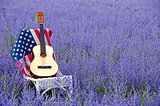 guitar on flag in purple field