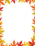 Autumn border design vector illustration