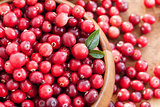 Fresh red cranberry
