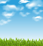 Summer background with green grass and sky