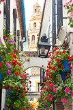 Famos Street Flowers decorated, Cordoba, Spain, Mediterranean Eu