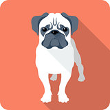 dog icon flat design