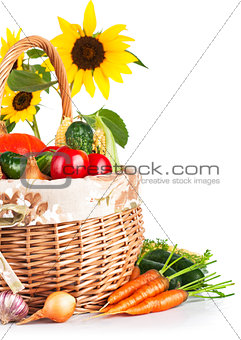 autumnal harvest vegetables in basket