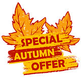 special autumn offer with leaves, orange and brown drawn label