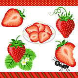 Strawberry Digital Clipart