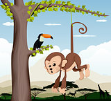 Monkey and a bird in a tree