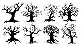 scary tree silhouettes