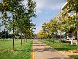 Autumn in the Sittard city