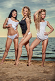 Three sexy young women posing on the beach