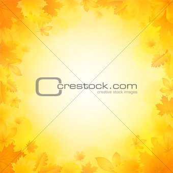 Autumn background of leaves