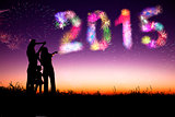 happy new year 2015. family watching the fireworks and celebrate
