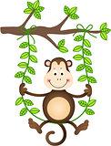 Monkey in a Swing