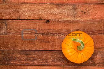 autumn pumpkin on rustic wood