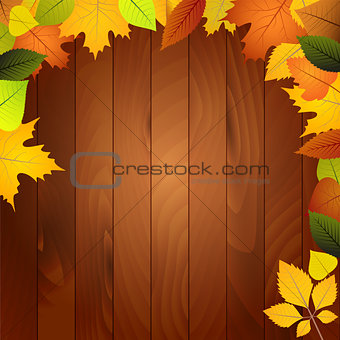 Autumn leaves on a wooden wall