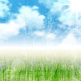 Grunge nature landscape vector background
