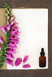 Foxglove Herbal Mediicine