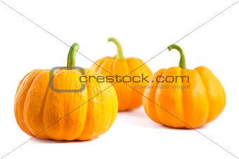 Small decorative orange pumpkins