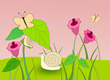 Snails and Butterflies