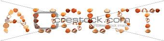 A U G U S T text composed of seashells