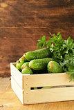 fresh organic cucumbers in a wooden box