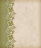 Vintage background and floral ornament