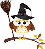 Halloween owl with witch broom