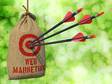 Web Marketing - Arrows Hit in Red Target.