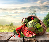 Watermelon and landscape