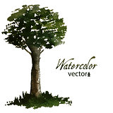 Watercolor green tree for your design