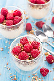 Yogurt with muesli and fresh raspberries