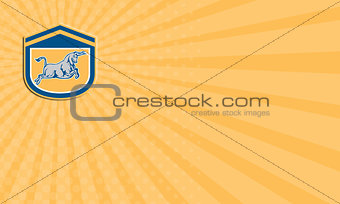 Business card Bull Attacking Charging Shield Retro